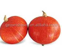 red skin pumpkin F1 vegetable seeds with fresh strong virus resistance