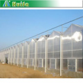 PC Material Transparent Commercial Polycarbonate Sheet greenhouse