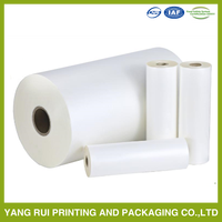 Economic Strong Sealing stretch film jumbo,greenhouse plastic film rolls