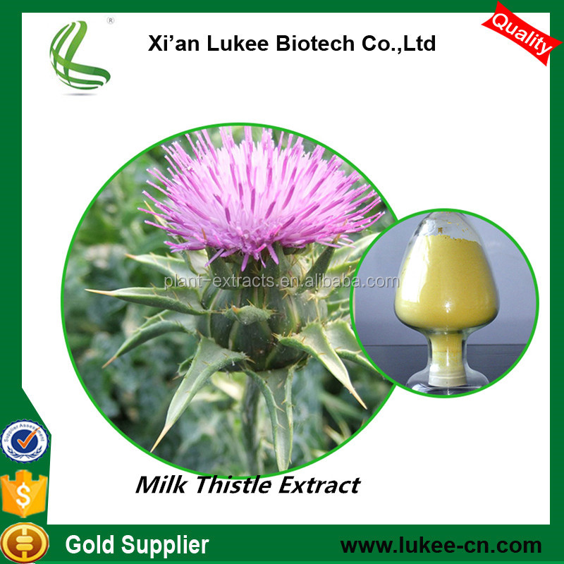 Factory Supply Milk Thistle Extract Powder , Silybum Marianum Extract