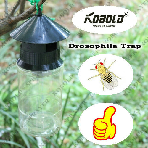 KOBOLD Pest Control Plastic Traps For Fruit Fly