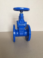 DN250or300 PN16 gear operated gate valve