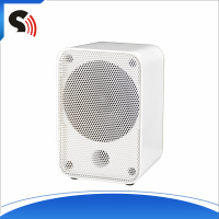 Magic White Plastic Mesh One Pair 3 Inch Full Range Professional Sound Box Home Theater Vibration Speaker