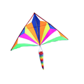 Customize the latest large patent delta kite from kite factory