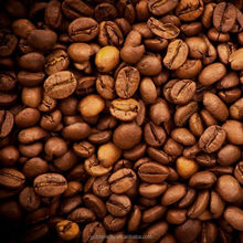 Top Level Promotional Raw Coffee Arabica Bean