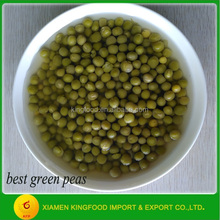best green pea canned Chinese vegetables