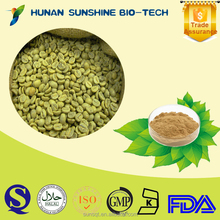 Herbal extract chlorogenic acid powder green coffee bean extract