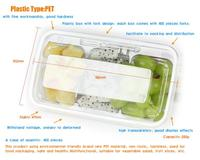 new design Hinged Clamshell PET salad Tray