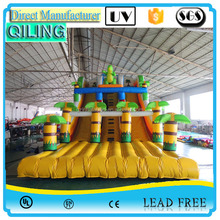 Waterworld Slide,inflatabe slide,inflatable wet/dry slide