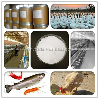 betaine HCl 98% animal feed from cangzhou