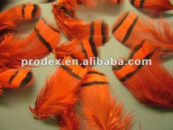 Dyed Lady Amherst Pheasant tippet feathers