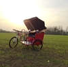 chinese supplier new style sightseeing tri-motorcycle /pull rickshawcan be customized