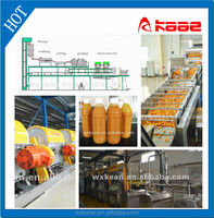 Hot sale industrial citrus juice production plant manufactured in Wuxi kaae