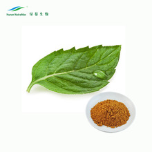 Mulberry Leaf Extract, Mulberry Leaves Extract, 1-Deoxynojirimycin (1-DNJ)