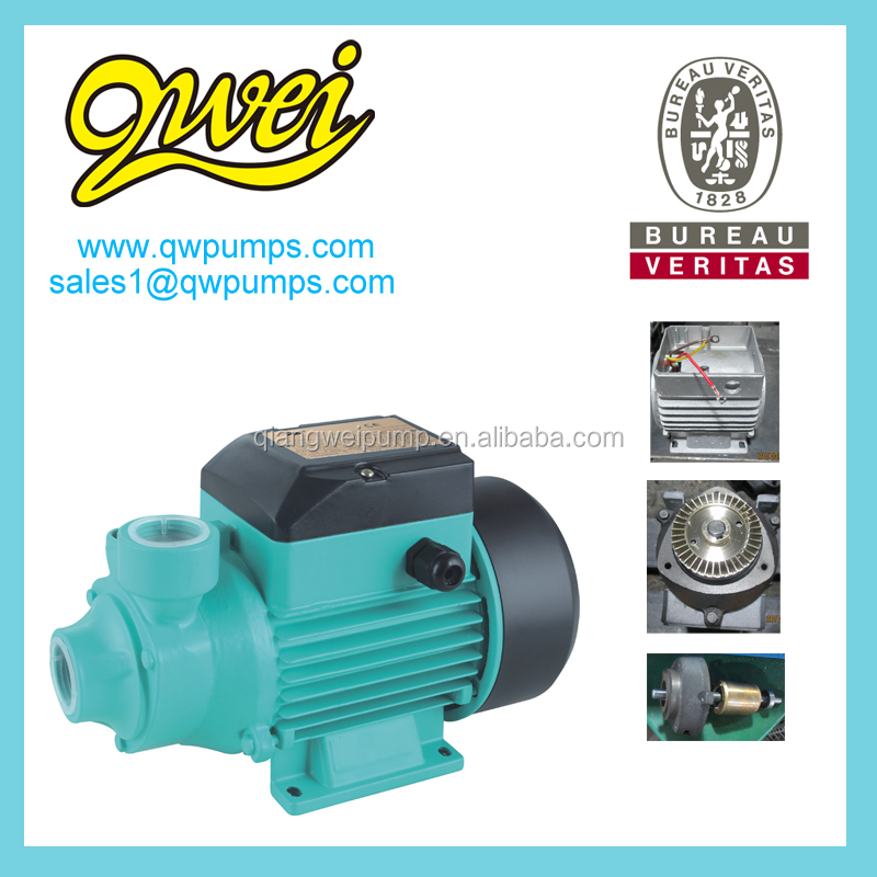 QB60 Italy style water pump with 100% copper motor