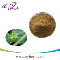 100% Natural Manufactory supply 40~90% Tribulus Terrestris Extract