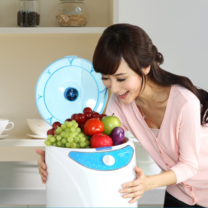 Household Ozone Food Sterilizer O3 Fruit Vegetable Washer