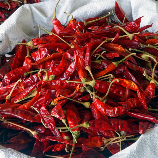 Grade A natural red dried chili pepper