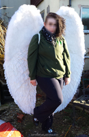 Large photo prop feather angel wings