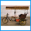 Zero Pollution Public Tourist Attraction Three Wheel Electric Tricycle Rickshaw
