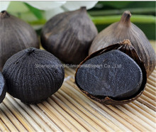 Best price high quality solo black garlic