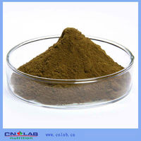 (GMP,ISO,Kosher Factory) Pure Bluish Dogbane Extract