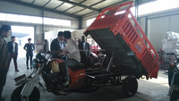 Semi-closed Tricycle 200cc Cargo tricycle adult electric tricycle hydraulic lifting trolley with CCC