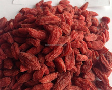 Health Food Goji Berries Organic