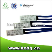 Fluorescent lighting ballasts of thermal protector for lighting