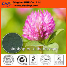 China BNP Supply Natural Red Clover Extract/red clover extract powder