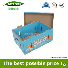 Safety Corrugated Paper custom Printed Fresh Mushroom Packing box