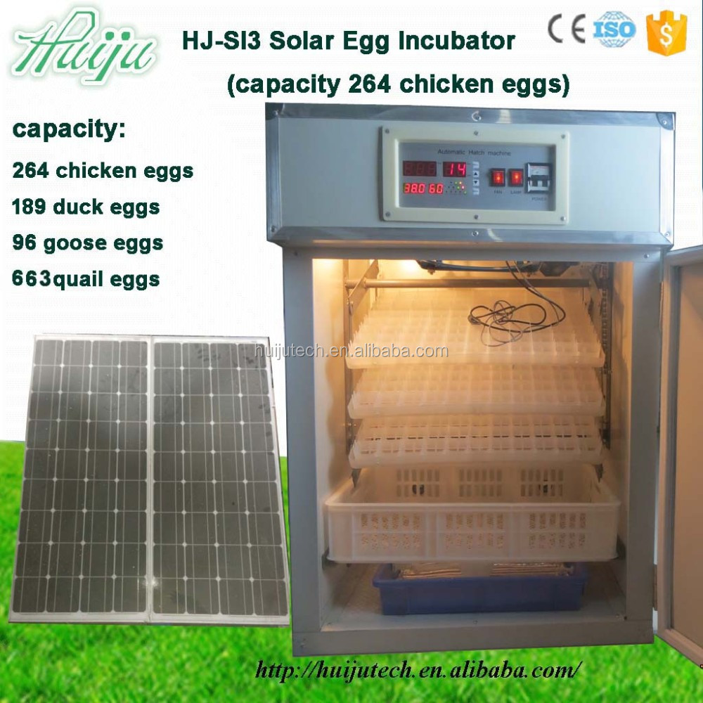 264 chicken eggs capacity solar incubator HJ-SI3 in China
