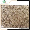/product-gs/wholesale-goods-from-china-low-price-for-cumin-seeds-60488562492.html