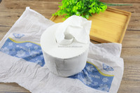 Organic obama toilet paper suppliers in gauteng