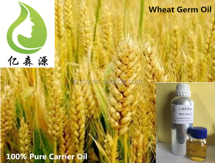 Best Price Natural Bulk Wheat Germ Oil Prices Wholesale Wheatgerm Oil