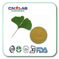 Pure natural herbal ginkgo biloba oil extract