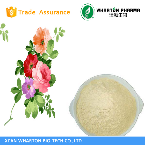 High Quality collagen type ii powder