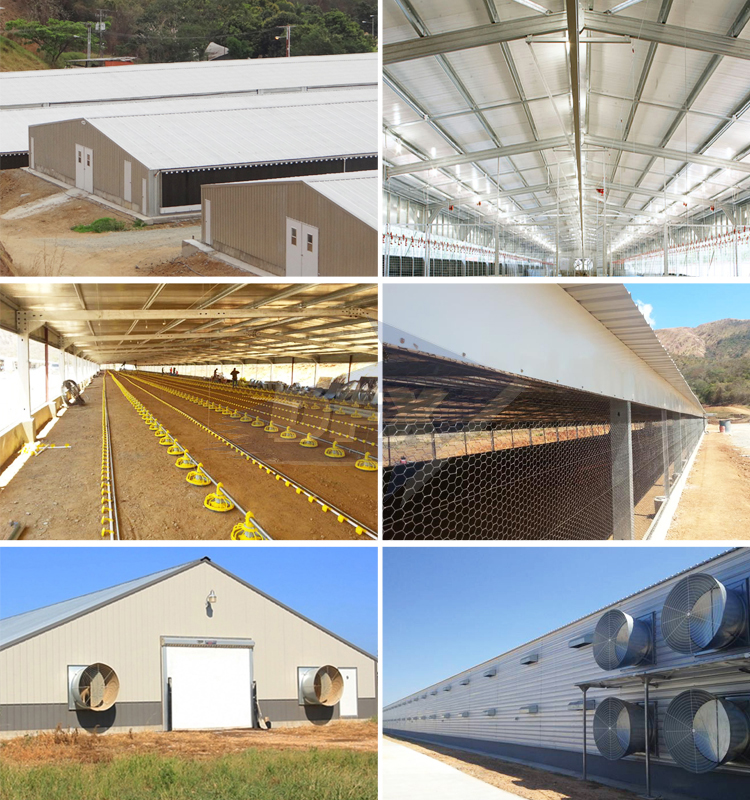 Low Cost Factory Workshop Agricultural Steel Building Structure Farm Shed