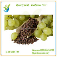 Grape Seed Extract Proanthocyanidin 95%, food grade grape seed powder