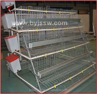 Wholesale Superior Quality Automatic Chicken Layer Cage In Philippines( A & H type layer chicken cage)