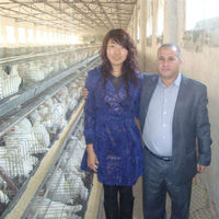 Taiyu 20 years using Layer Chicken Battery Cage