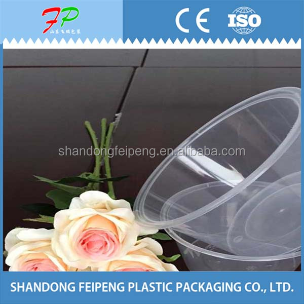 disposable food containers for office ladies