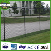 2016 The new design Powder coated black temporary Chain Link fencing