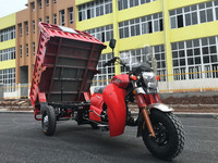 China new design popular motorized cargo tricycle for South America