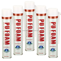 750ml Professional B2 Fire Resistant PU Foam Spray, Polyurethane Foam