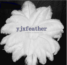 Dyed Pattern Vegas decoration white artificial ostrich feathers