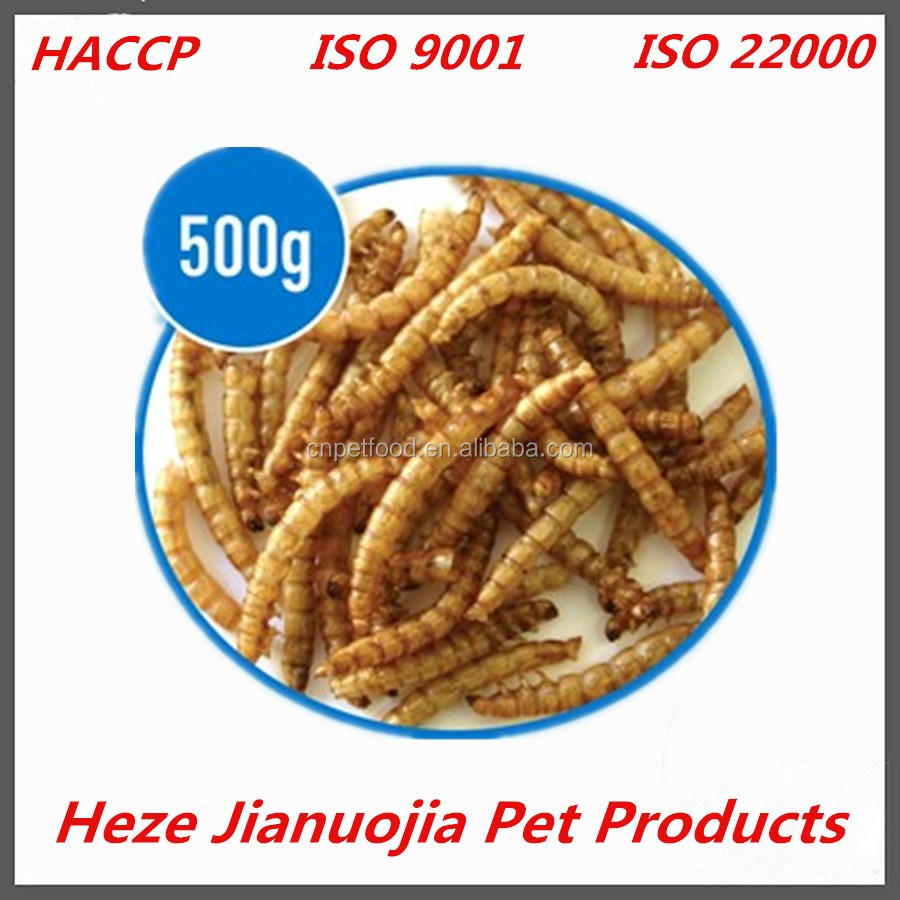 wholesale worm breeding dried mealworms 500g pigeon feed
