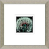 35*35cm Green dandelion crystal picture