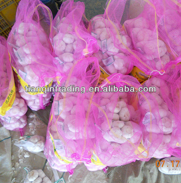 small packing garlic price 2012