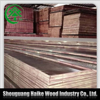 7 ply 12mm hardwood film faced plywood for sale
